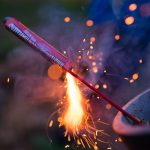 Managing Firework Fears in your pets